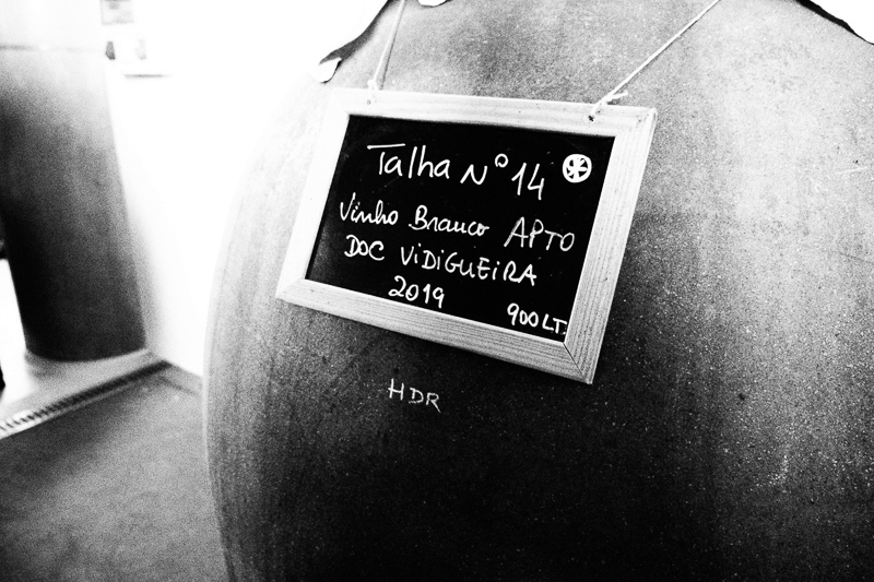 Made in clay (1): Talha Day, a festival of amphora wines – wineanorak.com