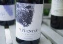 Highlights: Suertes del Marques 7 Fuentes 2016 Tenerife