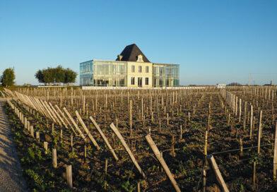 In Bordeaux: Château Pedesclaux is a Pauillac star reborn