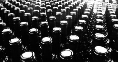 Glass bottles for wine: exploring the science