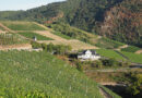 Nahe Riesling: 33 top examples from this interesting German wine region