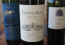 Malbec study: four top wines from Argentina