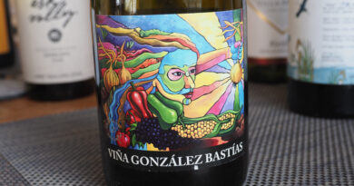 Viña González Bastías, Maule Valley, Chile: exciting traditional wines from extremely old vines