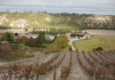 Montebaco: one of the most exciting producers in Ribera del Duero