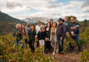 Video: Languedoc wine camp, edition 1, 2021