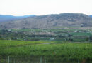 Iconic Wineries of British Columbia: tasting some of the Okanagan's top wines